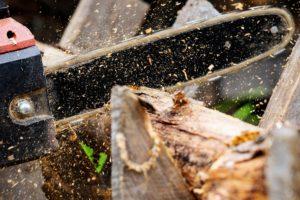 Biomassa Legnosa scarti industriali legno
